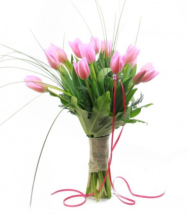Tulipanes Royal Pink