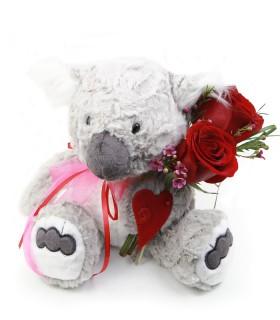 koala-love