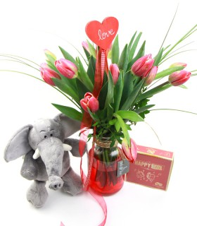 Pack Tulipes