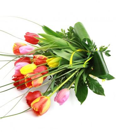 Tulipanes Mix
