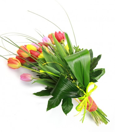 Tulipanes Mix