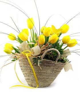 Bolsito Tulipanes