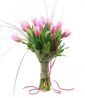 Tulipes Royal Pink