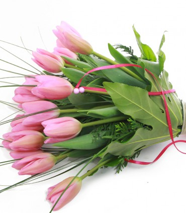 Tulipanes Rosados