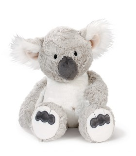 Teddy Koala