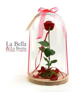 Rosa La Bella y La Bestia