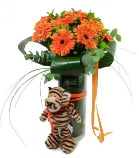 Gerberas Naranjas & Tigre
