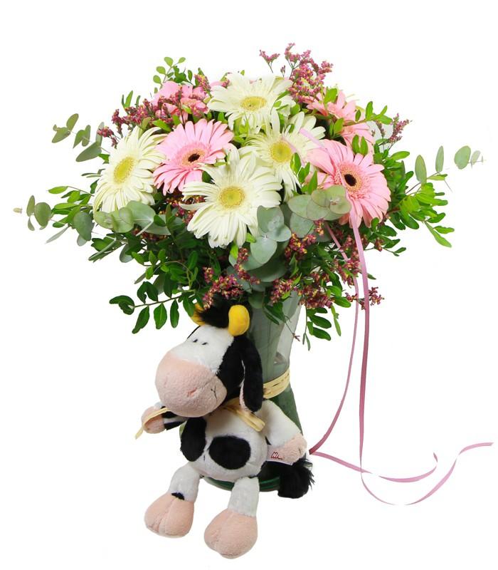 Gerberes Rosades & Vaca