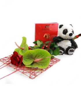 Pack Anthurium & Panda