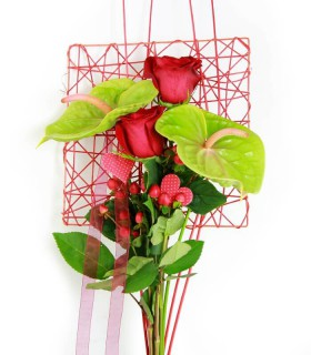 Pack Anthurium & Panda