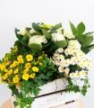 Cistella de Plantes Dia de la Mare