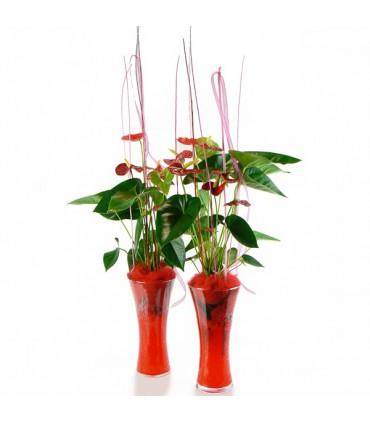 Anthurium Rojo en cristal