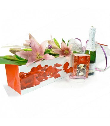 Pack Liliums Rosa