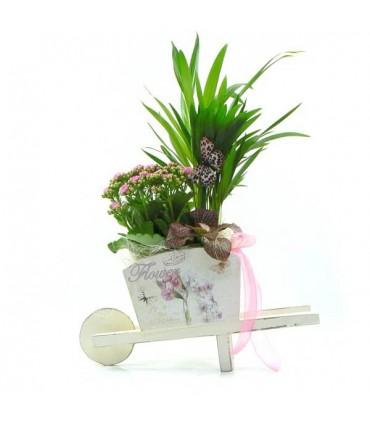 Carrito con plantas