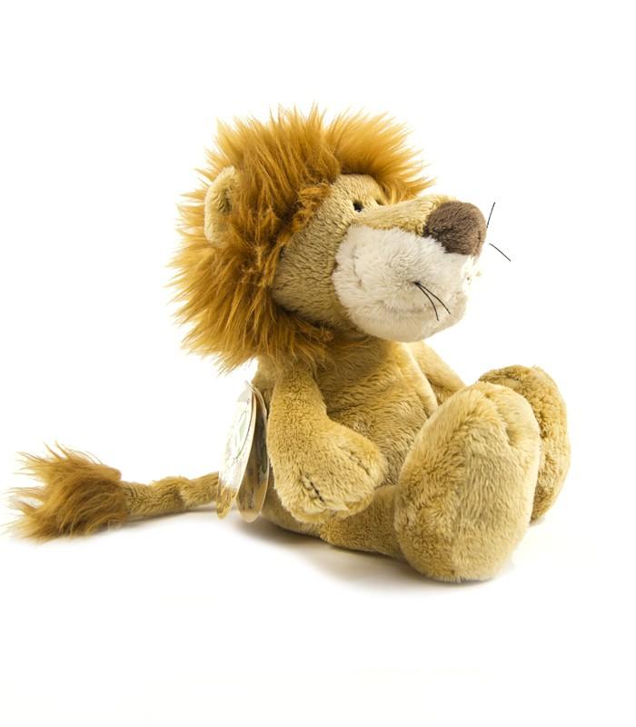 Teddy Lleó