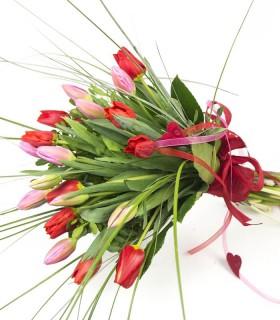 Tulipanes Swing