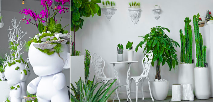 Decorar con plantas 10 ideas creativas florestore for Plantas para escaleras interior
